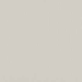 Cardstock - grijs, koud