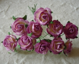 Paper roses, 15 mm. paars 2-tone