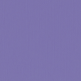 Cardstock - paars, purple
