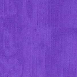 Cardstock - paars, violet