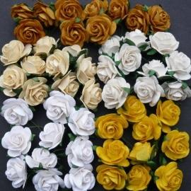 Paper roses, 25 mm. aarde