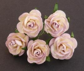 Paper roses, 25 mm. mushroom/cream