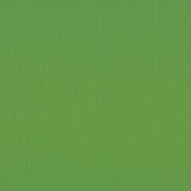 Cardstock - groen, kikker