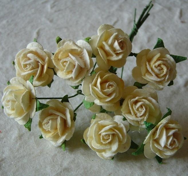 Paper roses, 15 mm. cream