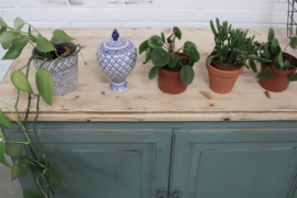 "Kast vintag  ""boho ""oleander"