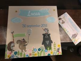 Geboorteschilderij Lucas
