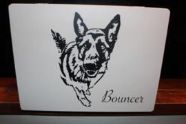 Herinneringskist voor Bouncer
