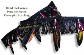 Band met gekleurde veren
