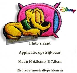 Pluto op zijn kussentje
