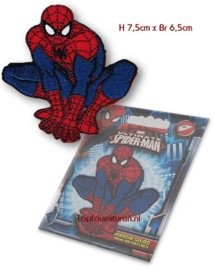 Spiderman applicatie