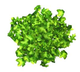 Stoffen Groene Blaadjes