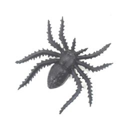 Insectenpotje met Spin