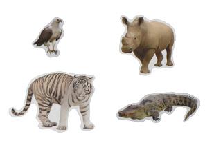 Wilde-Dieren Stickers