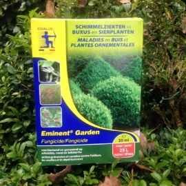 Buxus against fungal diseases