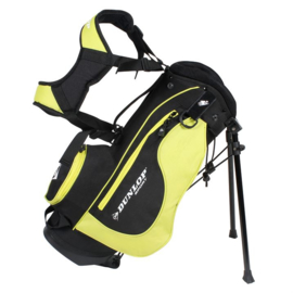 Golf Stand Bag 3 to 5 years