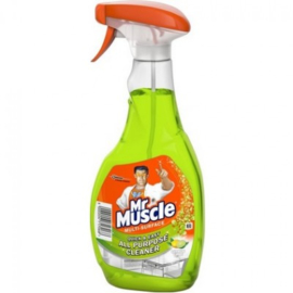 Mr Muscle Allesreiniger Spray – Citrus Limoen 500ml