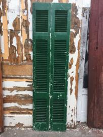 nr. L62 twee groene louvr deuren