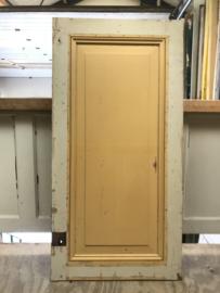 nr. 4353 deur met een vak