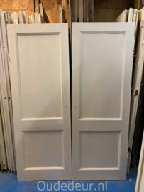 nr. 1N 2 gelijke oude kastdeuren