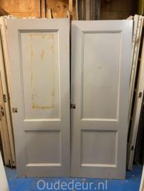 nr. 1p twee oude kastdeuren van een ensuite