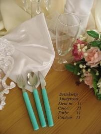 besteksetjes  voor bijv. bruidstaart/feestje/bbq  enz...  no 11  mintgroen