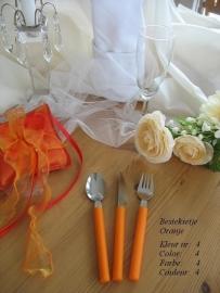 besteksetje voor bijv bruidstaart/feestje  no 4  oranje