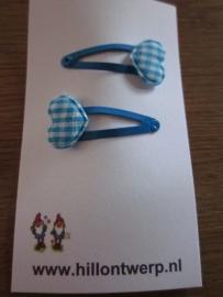 Blauwe knipjes