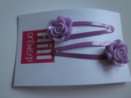 Paarse knipjes met paarse bloem
