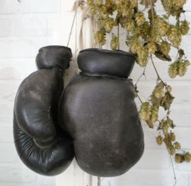 Oude bokshandschoenen