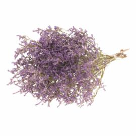 Statice tatarica naturel purple