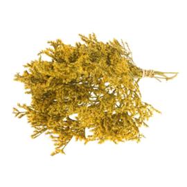 Tartaricum yellow