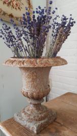 Gedroogde lavendel, vers geplukt