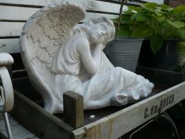 Engel beton