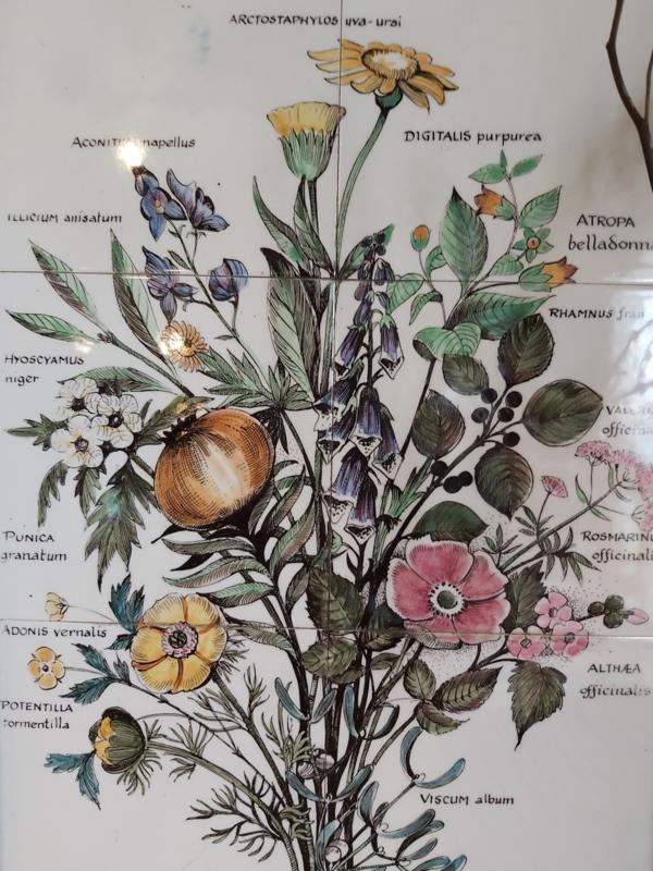 Botanische tegeltjes plateau