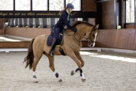 HKM Pro Team Zadeldek 'Equestrian'