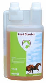 Excellent 'Feed Booster Horse'