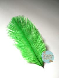 Struisvogelveer (3st) - Licht Groen - 15 tot 20cm