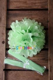 10x Pompoms - 25cm - Licht groen / Mint (ST110)