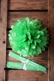 Pompom - 25cm - Gras groen (ST111)