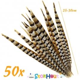 Fazant veren (50st) - +/- 30cm (ST071)