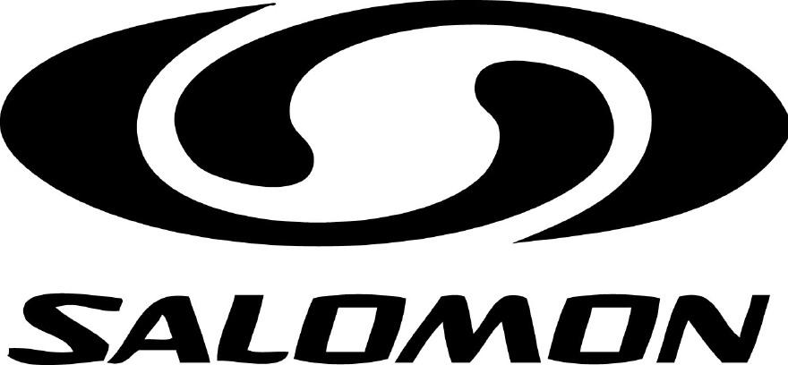 Salomon wandelschoenen