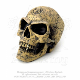Alchemy - Life Sized Skull - Omega Skull
