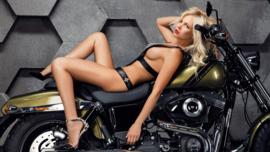 Dyna Lovers - Harley-Davidson