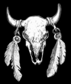 P130 - Pin - Buffalo Skull with Feathers -  Large