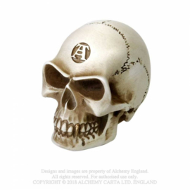 Alchemy - Alchemist Bone Skull Gear Shift Knob - Shifter