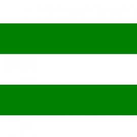 Flag - Rotterdam flag