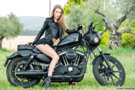 Black Sportster - Alexis Crystal - NSFW - XXX