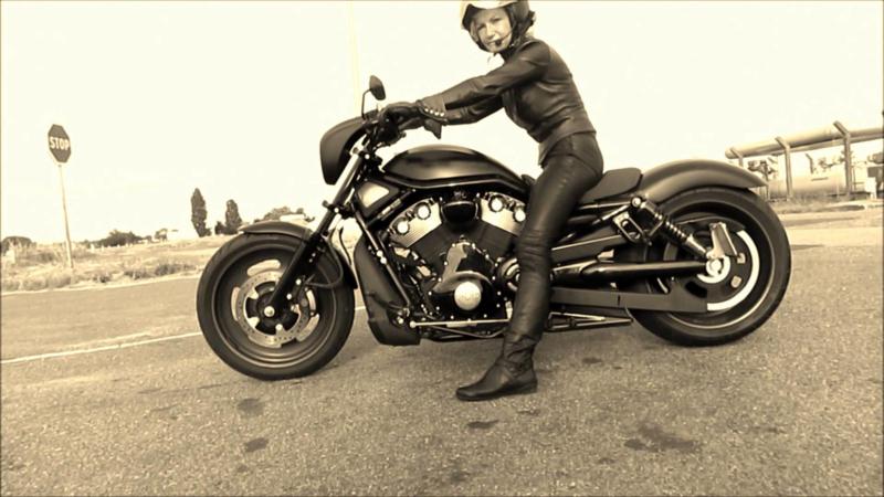 Book - Harley-davidson V-rod