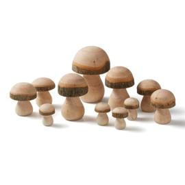 GK Paddenstoelen van hout
