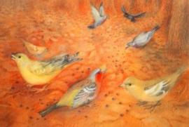 Ansichtkaart Bettina Stietencrom - Vogeltjes